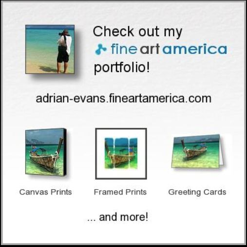 Adrian Evans Fineart America On-Line Shop